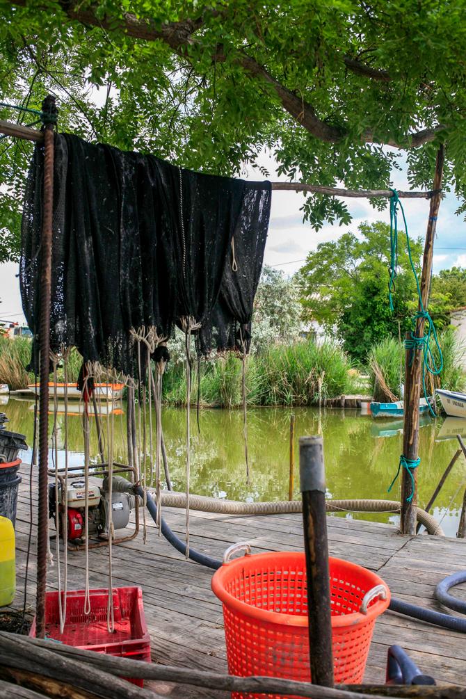 Cabane de pècheurs d'anguilles
